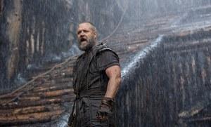 photo for Noah