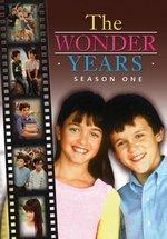 photo for The Wonder Years: Season One