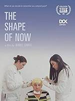 photo for The Shape of Now