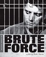photo for Brute Force